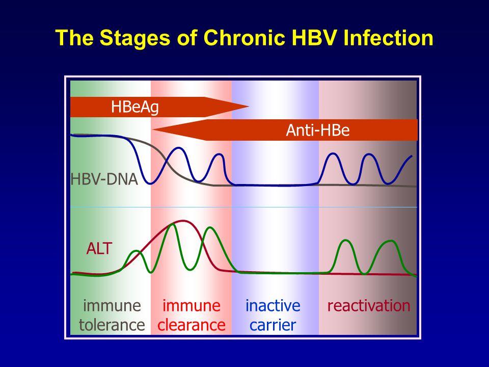 HBeAg positive HBeAg negative Giusti et al, Giusti et al, 1991 1975-85: 539 patients Prevalence of HBeAg Negative Chronic HBV in Italy 58% 42% Gaeta et al, 2003 2001: 837 patients 10% 90%