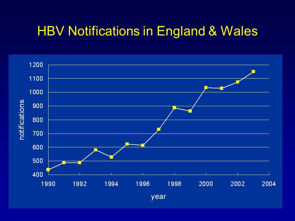 QE Hepatitis Database 2005/6 Hepatitis B