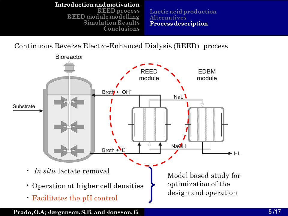 Prado, O.A; Jørgensen, S.B. and Jonsson, G. 5 /17 Continuous Reverse Electro-Enhanced Dialysis (REED) process In situ lactate removal Introduction and