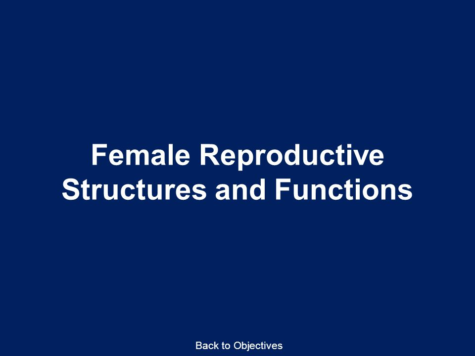 Female Reproductive Structures and Functions Back to Objectives