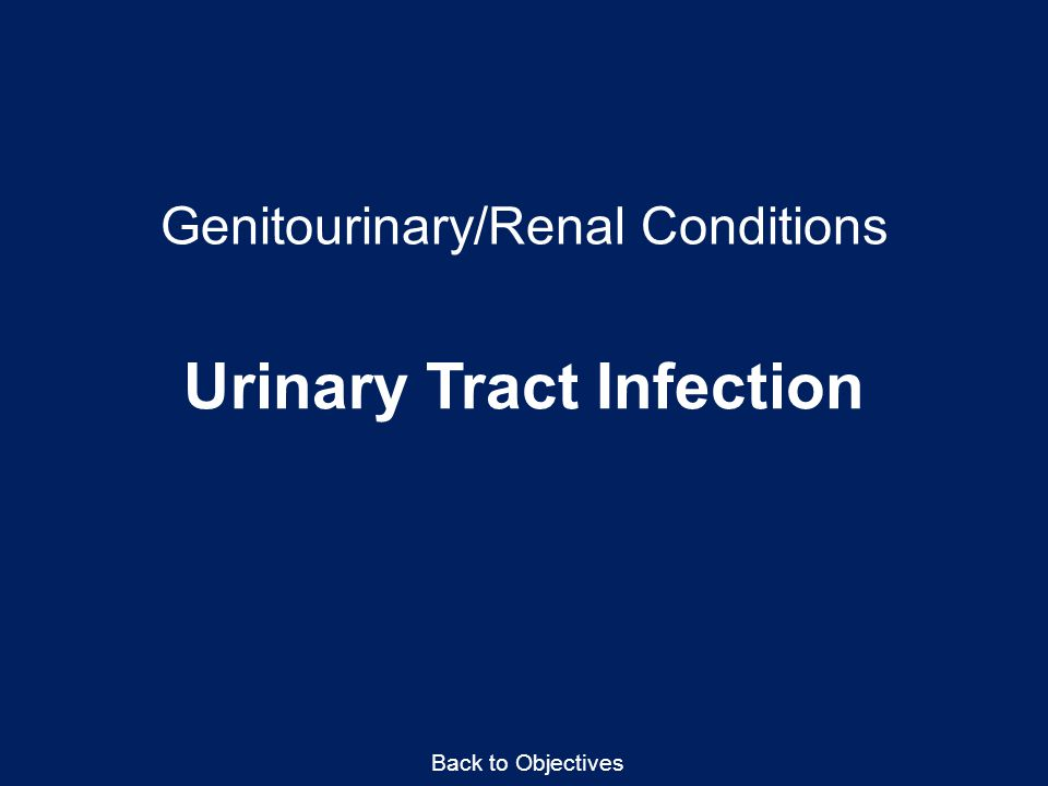 Genitourinary/Renal Conditions Urinary Tract Infection Back to Objectives