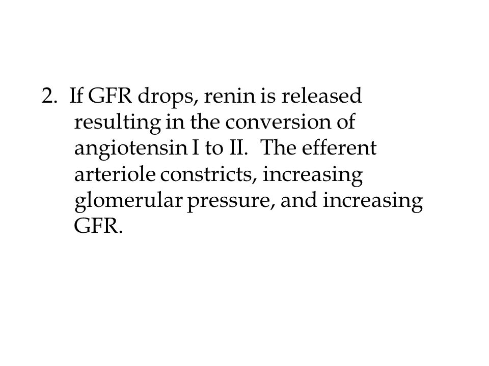 2.If GFR drops, renin is released resulting in the conversion of angiotensin I to II.