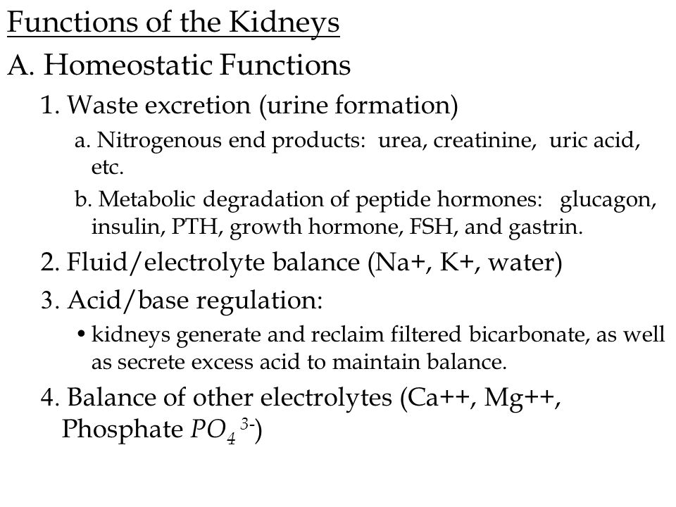 Functions of the Kidneys A.Homeostatic Functions 1.