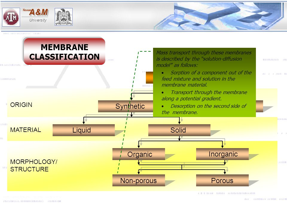 A&MA&M University Texas MEMBRANE CLASSIFICATION ORIGIN MATERIAL MORPHOLOGY/ STRUCTURE MEMBRANE Synthetic Biological SolidLiquid Organic Inorganic Non-