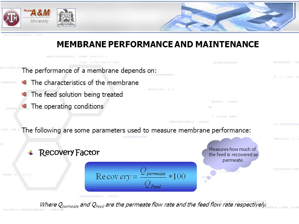 A&MA&M University Texas MEMBRANE PERFORMANCE AND MAINTENANCE The performance of a membrane depends on: The characteristics of the membrane The feed so