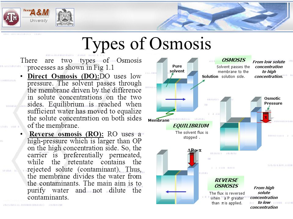 A&MA&M University Texas Types of Osmosis There are two types of Osmosis processes as shown in Fig 1.1 Direct Osmosis (DO):DO uses low pressure. The so