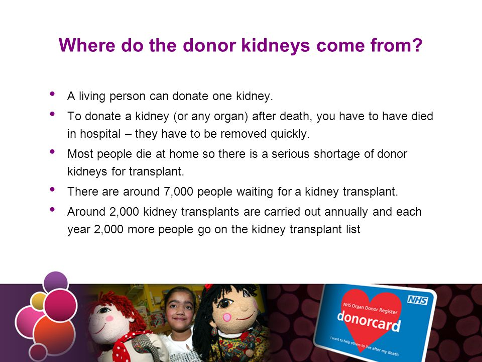 Organ transplants After death, the following organs can be donated for organ transplant: kidneys heart liver lungs pancreas small bowel In life, some organs can be donated too: kidneys, because we can manage with just one.
