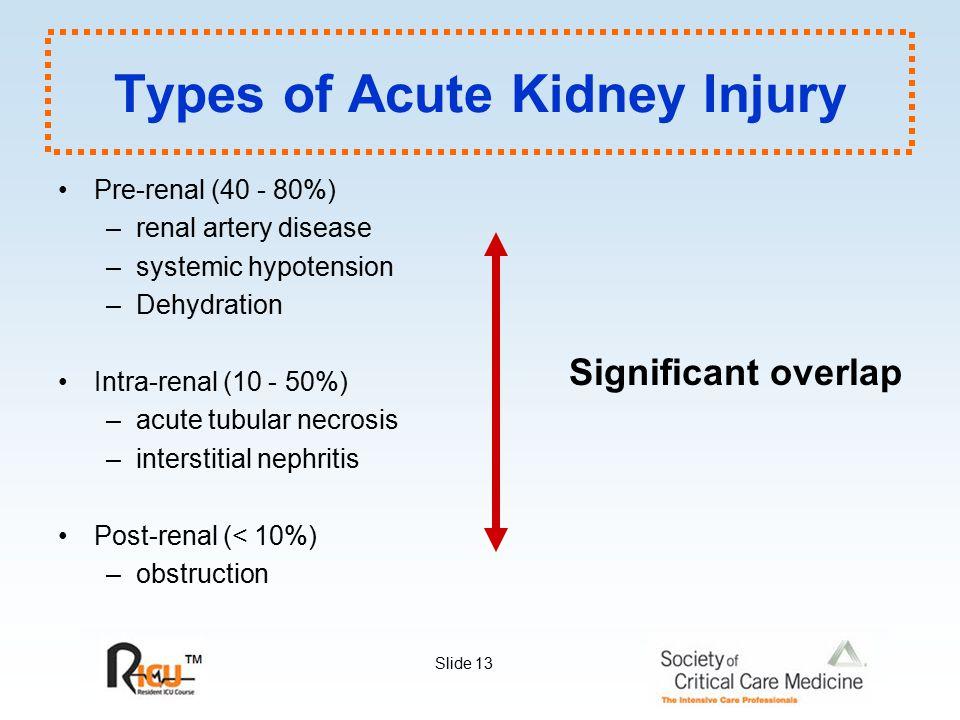 Slide 13 Types of Acute Kidney Injury Pre-renal (40 - 80%) –renal artery disease –systemic hypotension –Dehydration Intra-renal (10 - 50%) –acute tubu