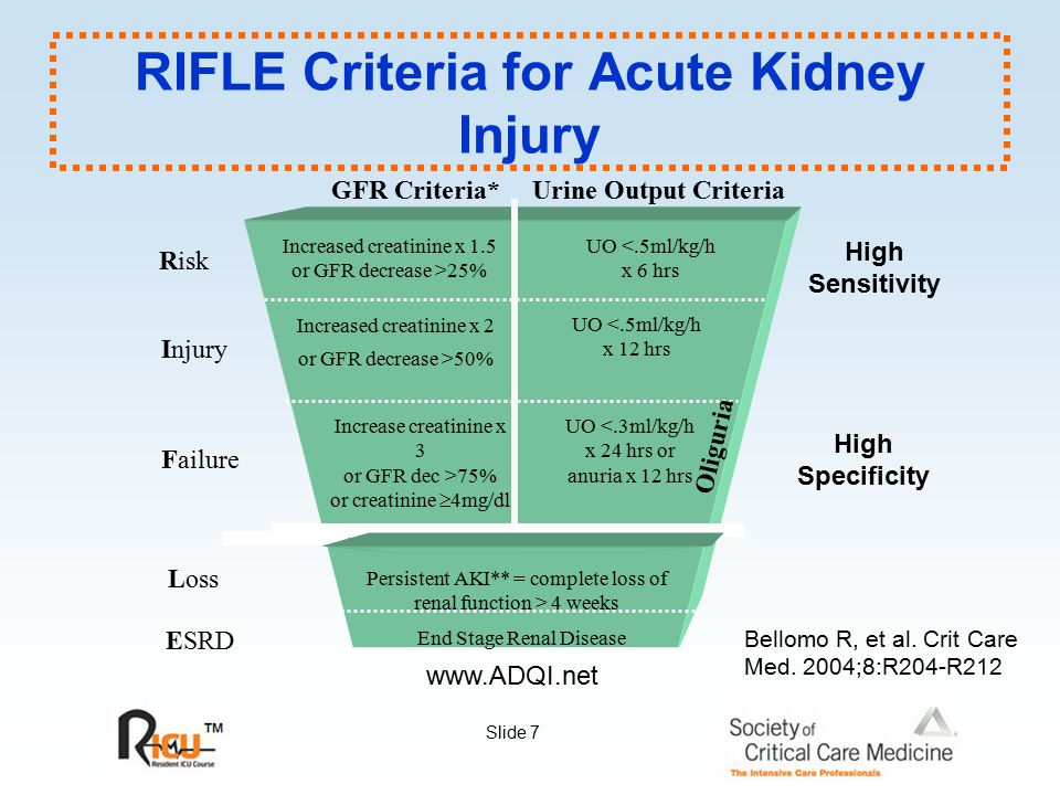 Slide 48 Treatment: Diuretics Diuretics: Effects on outcome (small RCTs) 66 patients randomized to receive furosemide (1.5 - 6.0 mg/kg) No significant differences in recovery or need for HD.