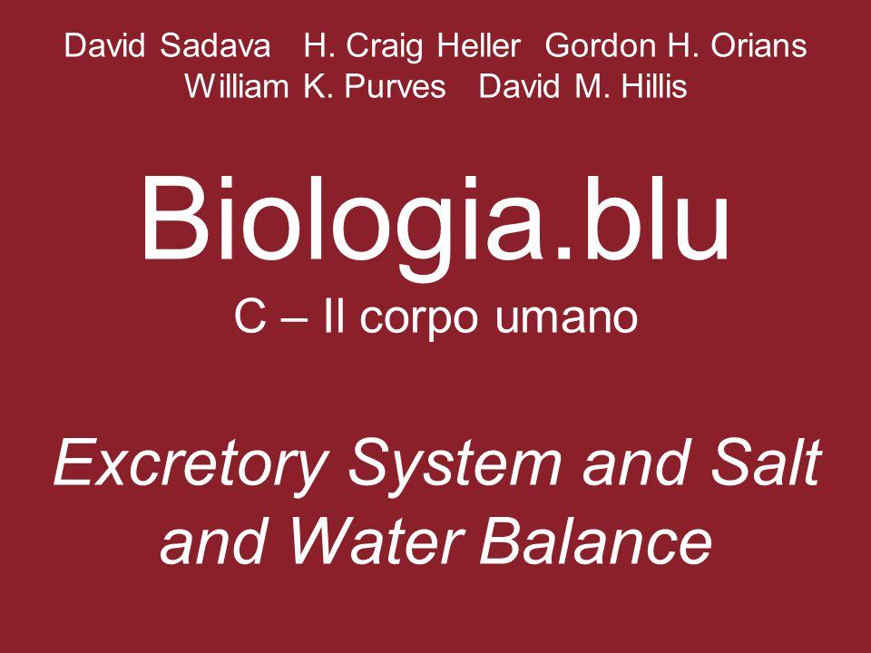 David Sadava H. Craig Heller Gordon H. Orians William K. Purves David M. Hillis Biologia.blu C – Il corpo umano Excretory System and Salt and Water Ba