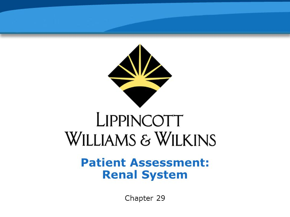 Patient Assessment: Renal System Chapter 29