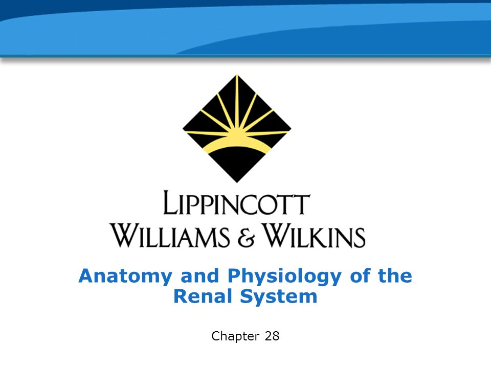 Copyright © 2005 Lippincott Williams & Wilkins.