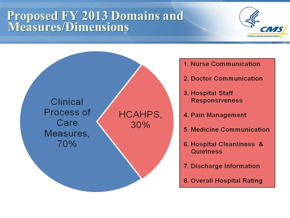 Proposed FY 2013 Domains and Measures/Dimensions