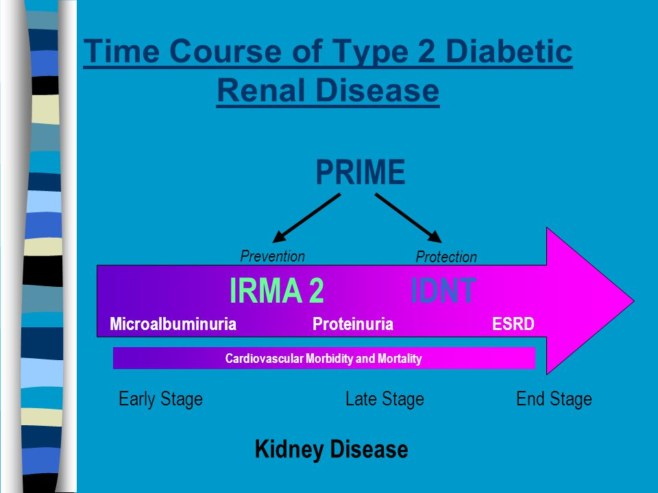Time Course of Type 2 Diabetic Renal Disease Early Stage Late Stage End Stage Microalbuminuria Proteinuria ESRD PRIME Kidney Disease IRMA 2IDNT Cardiovascular Morbidity and Mortality Prevention Protection