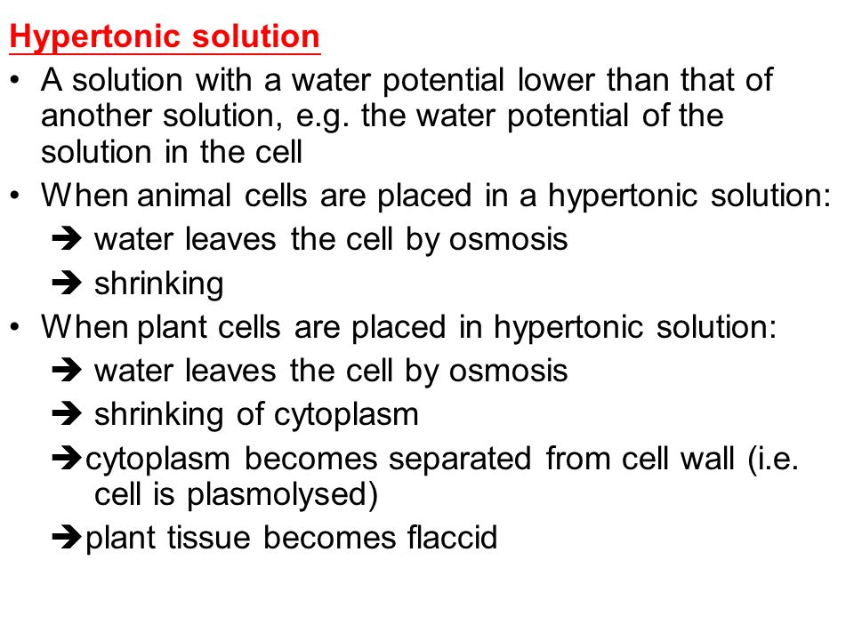How does osmosis affect organisms? Water molecules may move into or out of the cell by osmosis depending on the concentration of substances dissolved