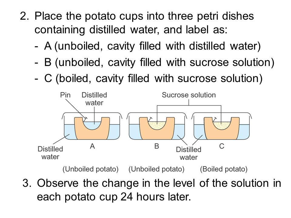 Procedure 1.Peel off the skins of potatoes and make 3 potato cups.