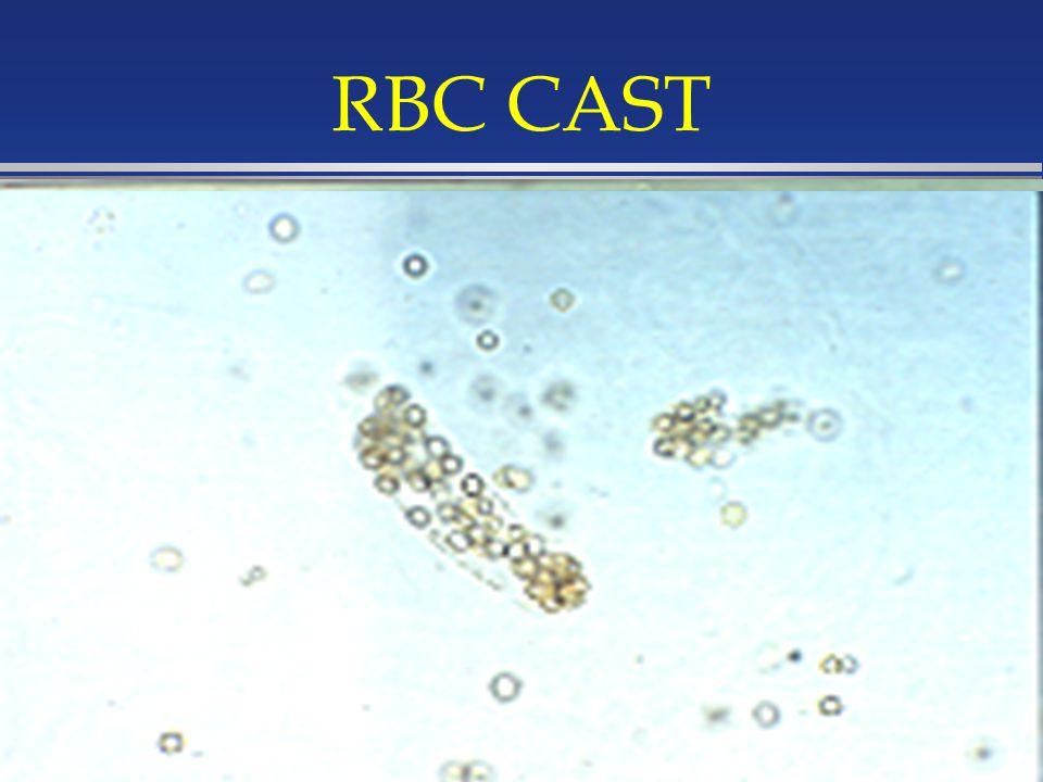 RBC CAST