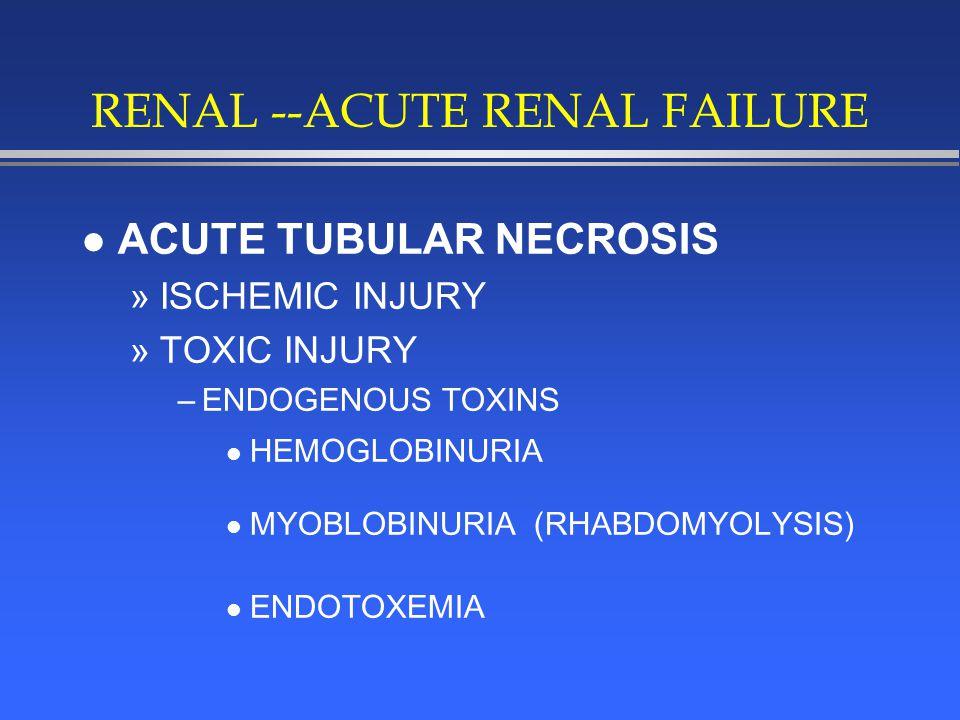 RENAL --ACUTE RENAL FAILURE l ACUTE TUBULAR NECROSIS »ISCHEMIC INJURY »TOXIC INJURY –ENDOGENOUS TOXINS l HEMOGLOBINURIA l MYOBLOBINURIA (RHABDOMYOLYSIS) l ENDOTOXEMIA