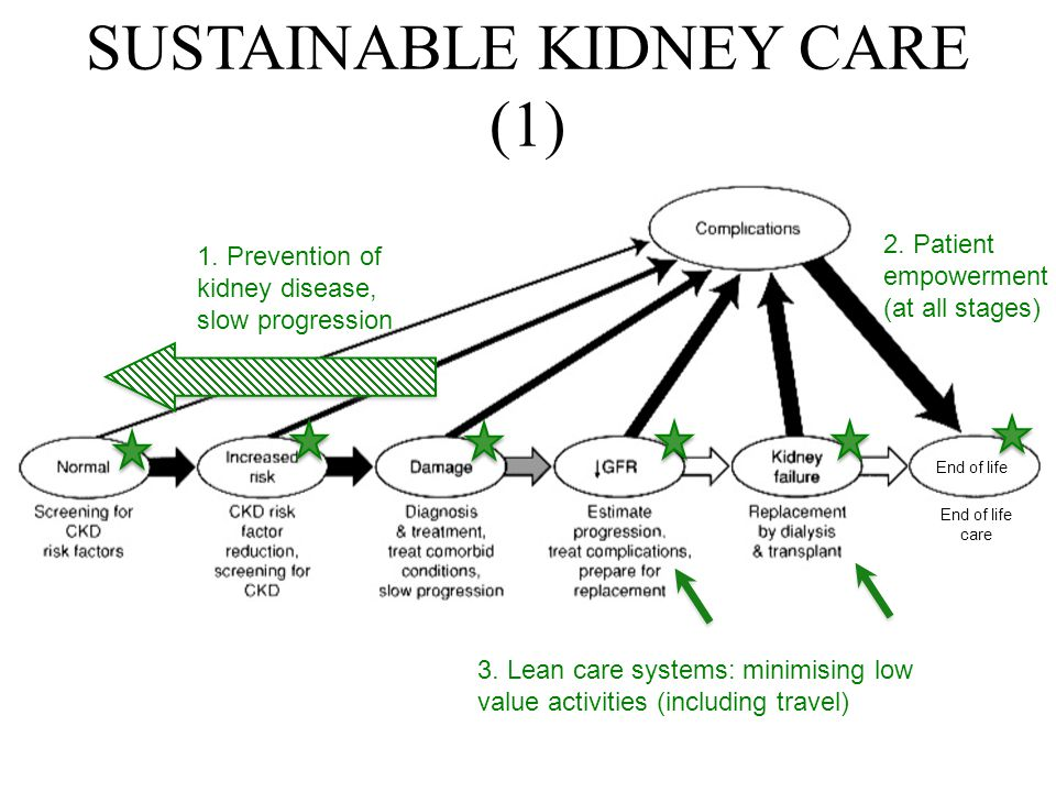 1. Prevention of kidney disease, slow progression 2. Patient empowerment (at all stages) 3. Lean care systems: minimising low value activities (includ