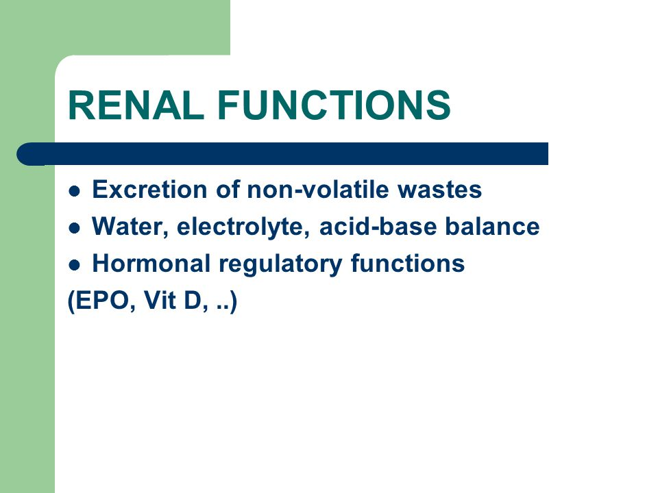 RENAL FUNCTIONS Excretion of non-volatile wastes Water, electrolyte, acid-base balance Hormonal regulatory functions (EPO, Vit D,..)