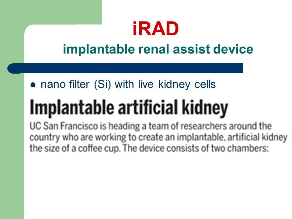 iRAD implantable renal assist device nano filter (Si) with live kidney cells