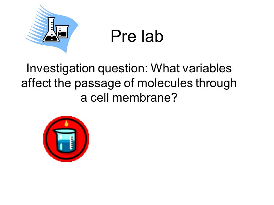 Pre lab Investigation question: What variables affect the passage of molecules through a cell membrane