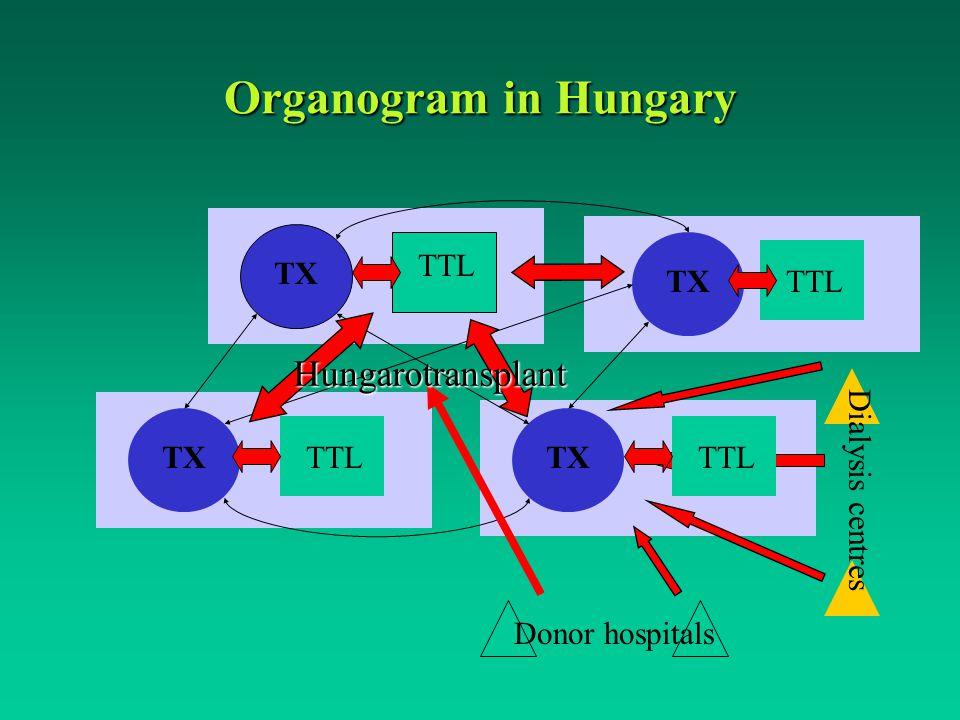 Organogram in Hungary TX TTL TX TTL Donor hospitals Dialysis centres Hungarotransplant