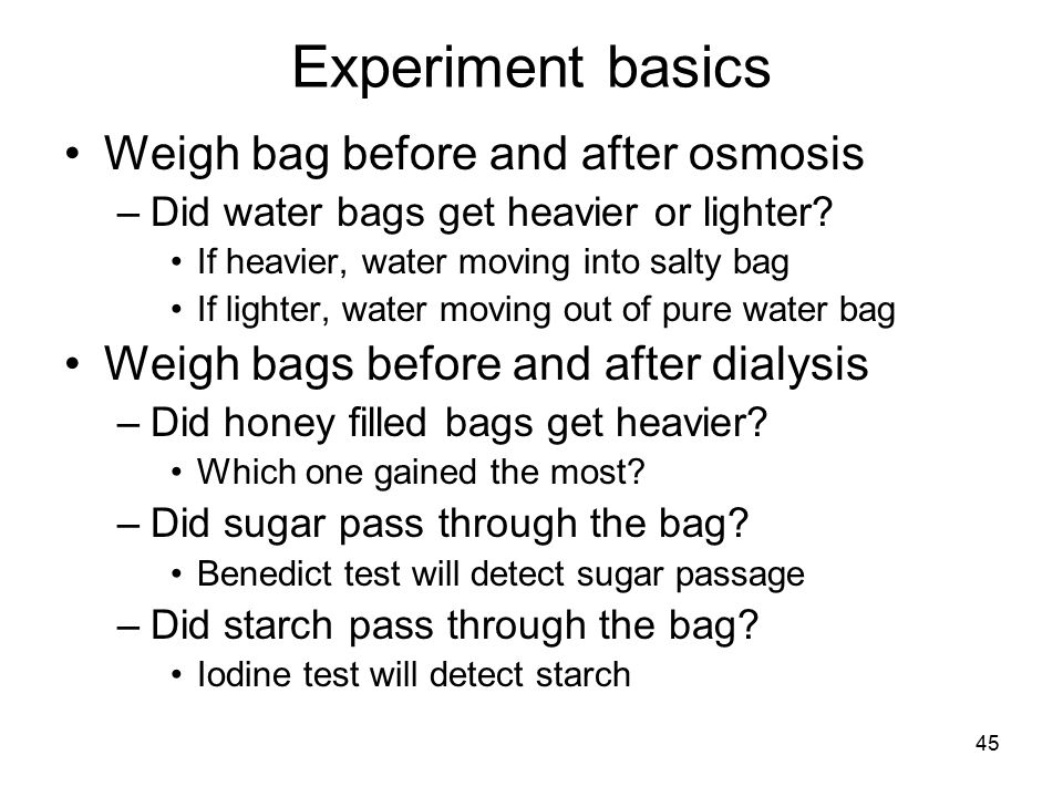 45 Experiment basics Weigh bag before and after osmosis –Did water bags get heavier or lighter? If heavier, water moving into salty bag If lighter, wa