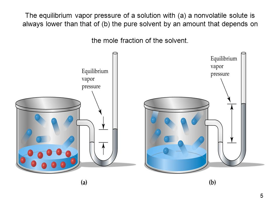 5 The equilibrium vapor pressure of a solution with (a) a nonvolatile solute is always lower than that of (b) the pure solvent by an amount that depen