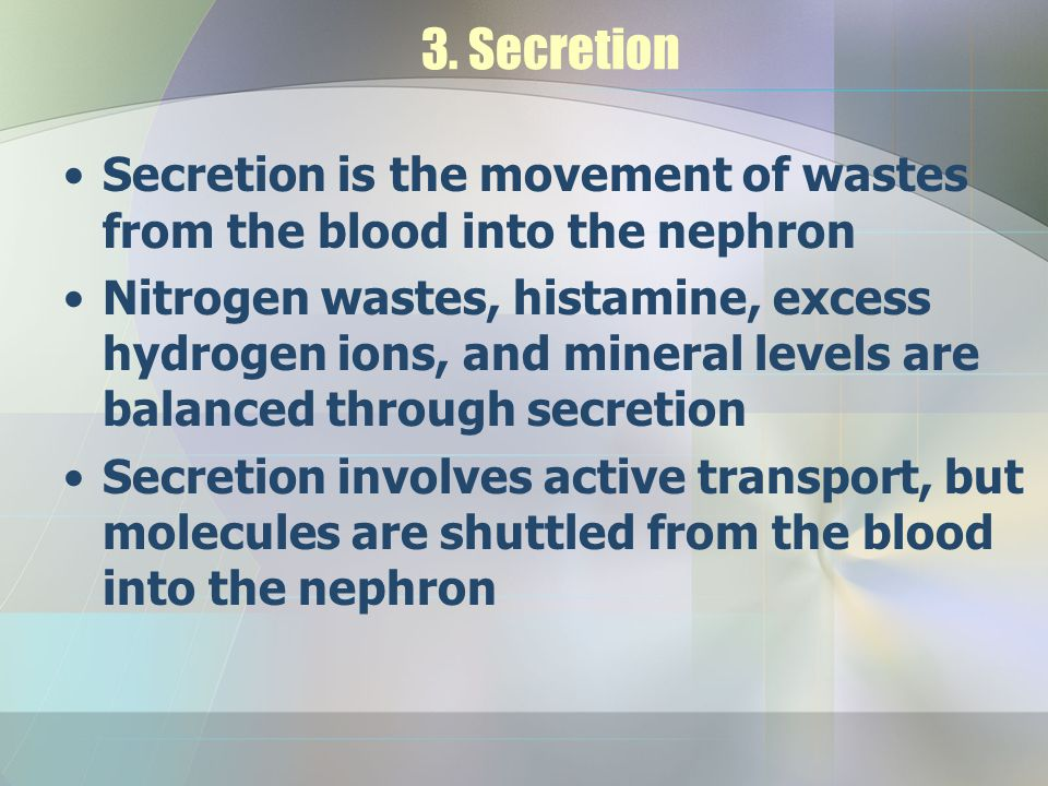 3. Secretion Secretion is the movement of wastes from the blood into the nephron Nitrogen wastes, histamine, excess hydrogen ions, and mineral levels