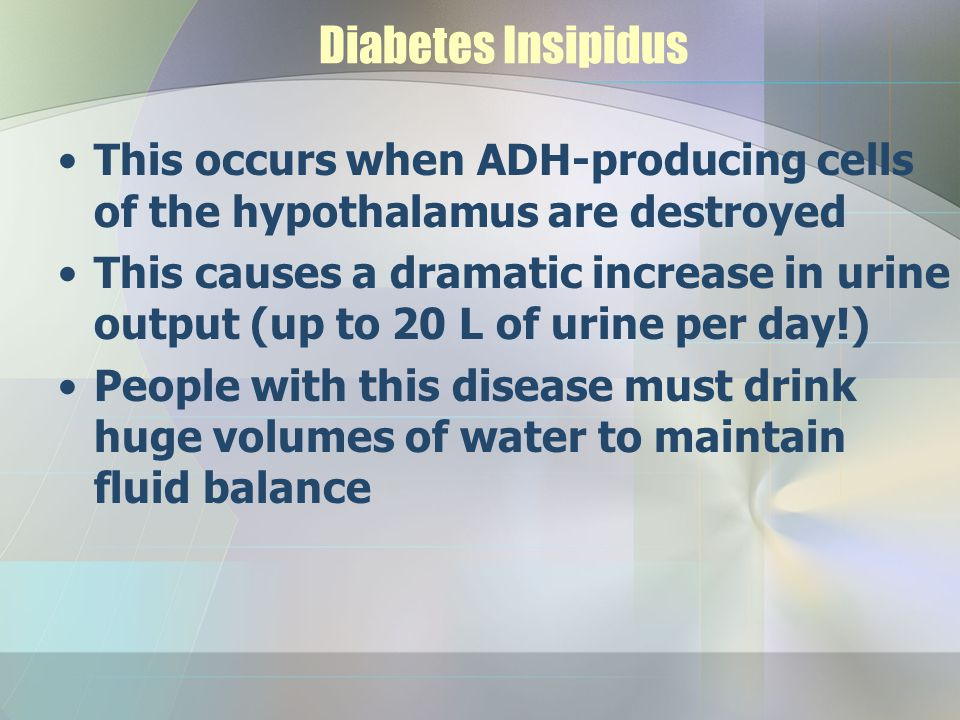Diabetes Insipidus This occurs when ADH-producing cells of the hypothalamus are destroyed This causes a dramatic increase in urine output (up to 20 L
