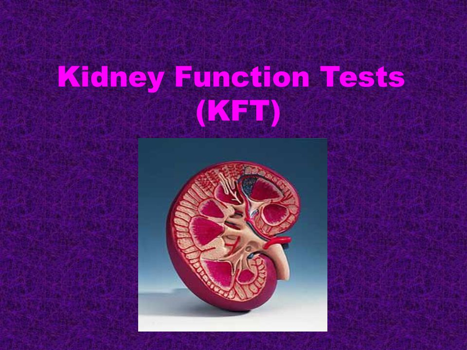 Kidney Function Tests (KFT)