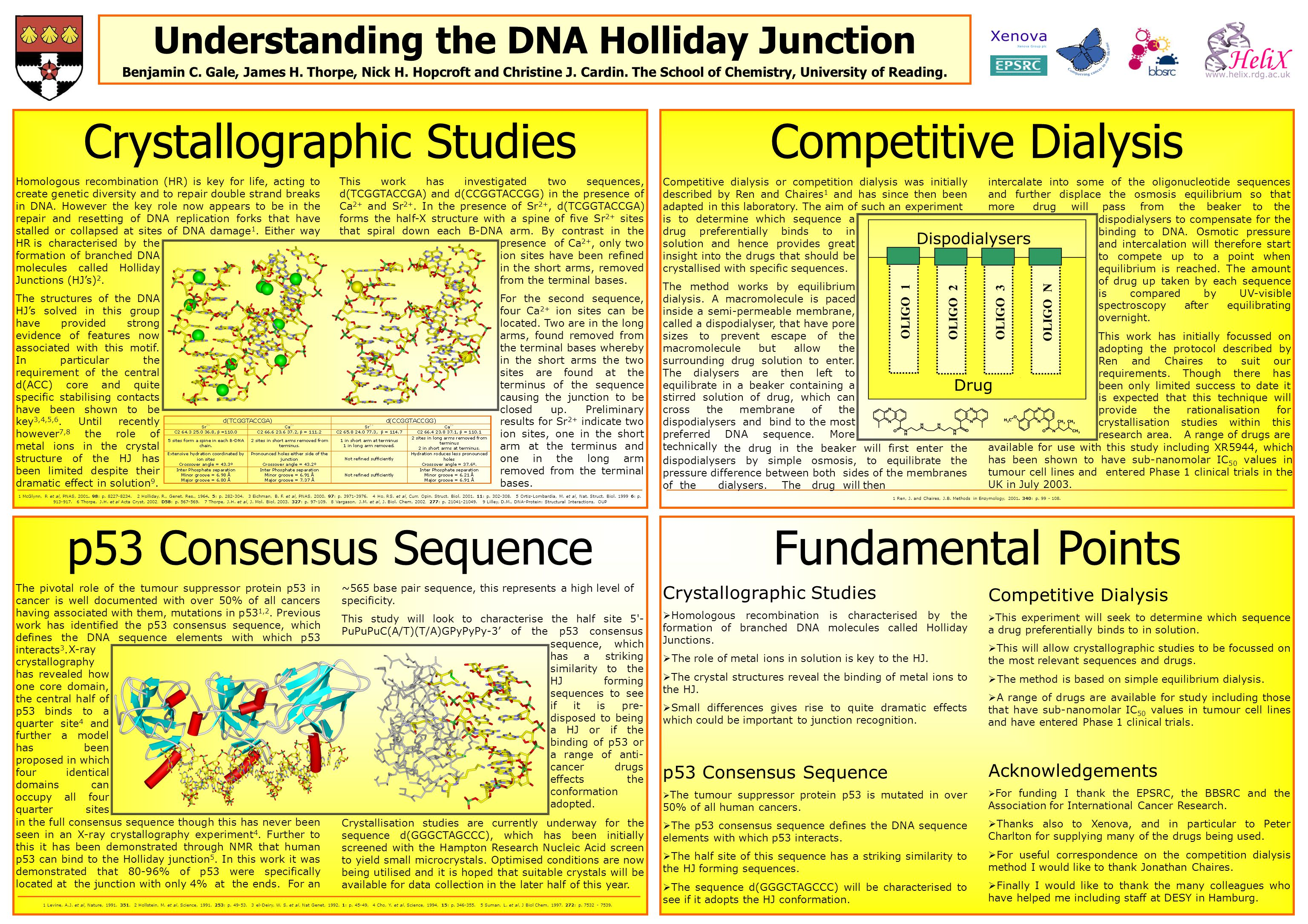 Understanding the DNA Holliday Junction Benjamin C.