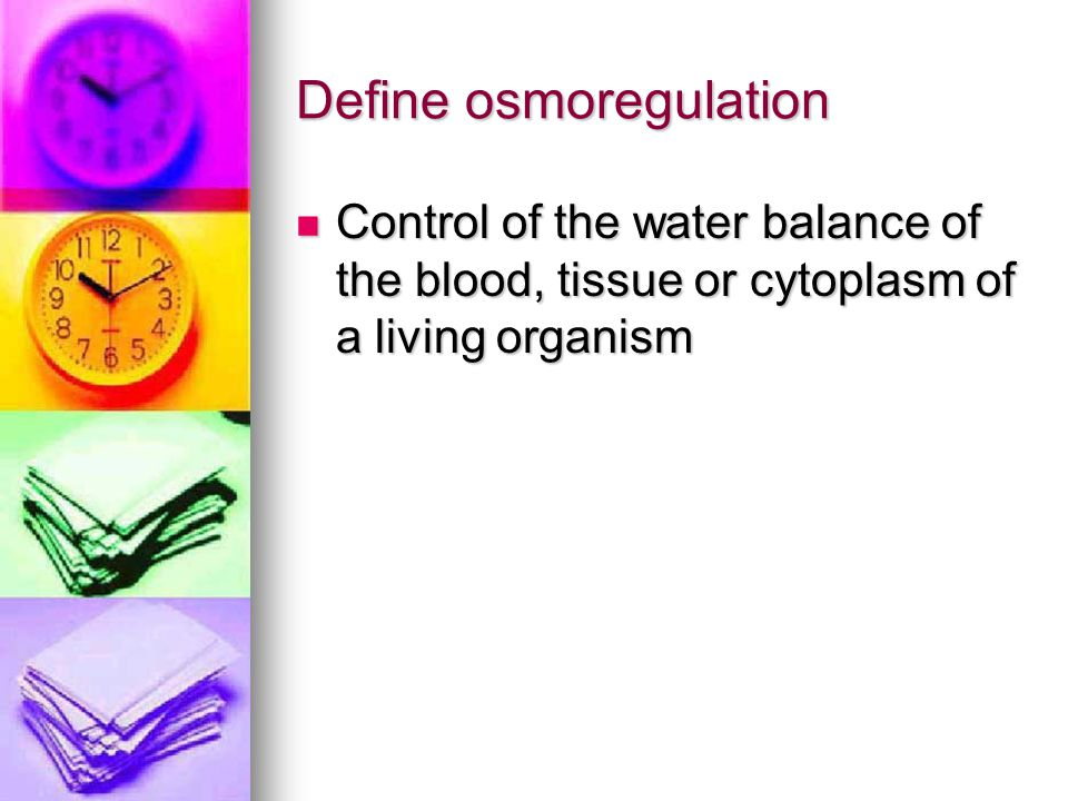 Define osmoregulation Control of the water balance of the blood, tissue or cytoplasm of a living organism Control of the water balance of the blood, tissue or cytoplasm of a living organism