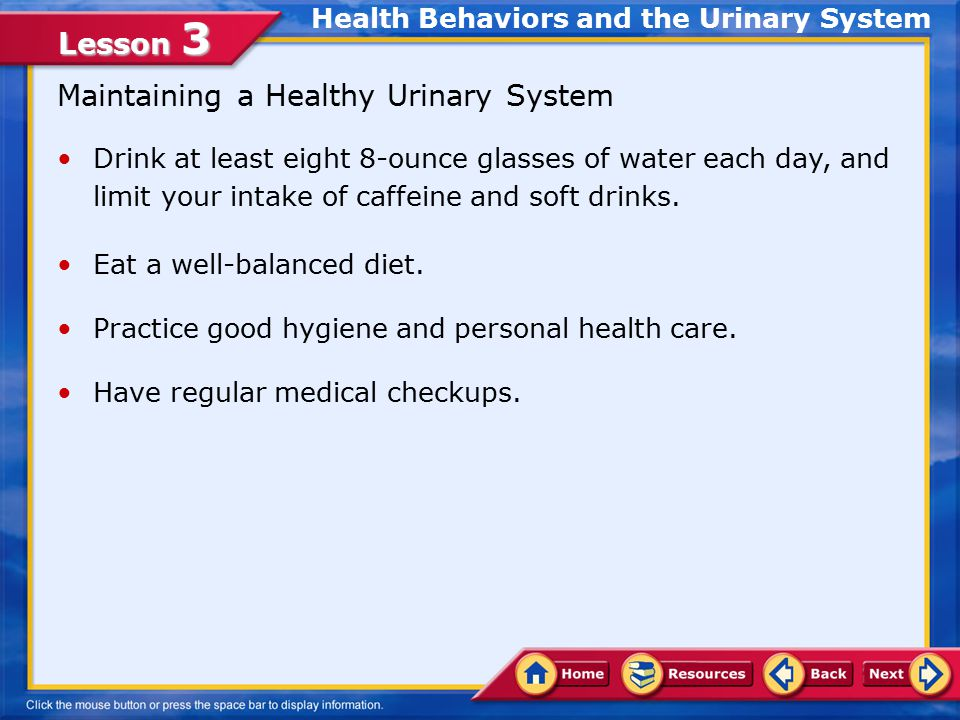 Lesson 3 Maintaining a Healthy Urinary System Drink at least eight 8-ounce glasses of water each day, and limit your intake of caffeine and soft drinks.