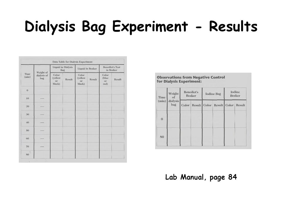 Dialysis Bag Experiment - Results Lab Manual, page 84