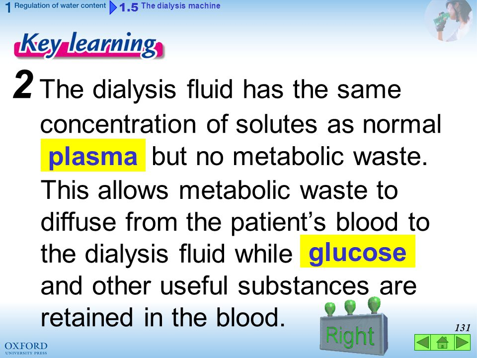 130 1 A dialysis machine removes metabolic waste patient's blood. from the 1.5 The dialysis machine