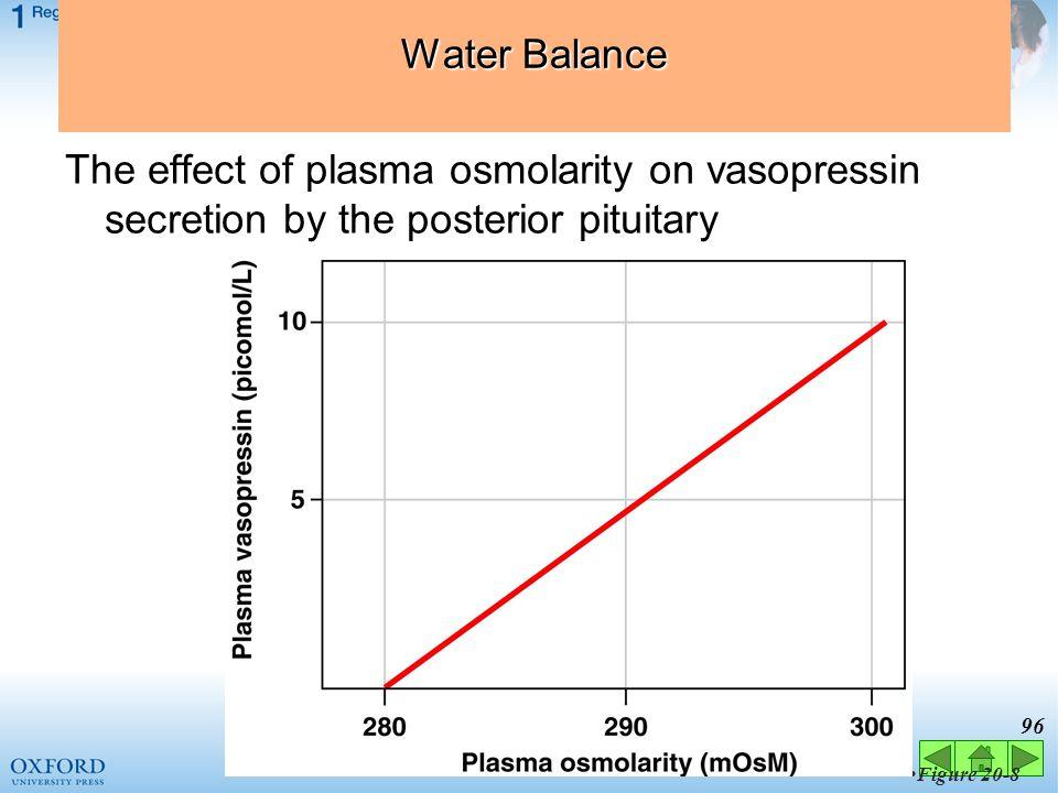 95 Figure 20-7 Factors Affecting Vasopressin Release