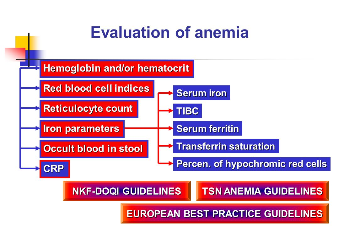 Evaluation of anemia Hemoglobin and/or hematocrit Red blood cell indices Reticulocyte count Occult blood in stool Serum iron TIBC Transferrin saturati