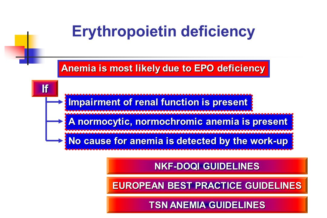 No cause for anemia is detected by the work-up Erythropoietin deficiency Anemia is most likely due to EPO deficiency If A normocytic, normochromic ane