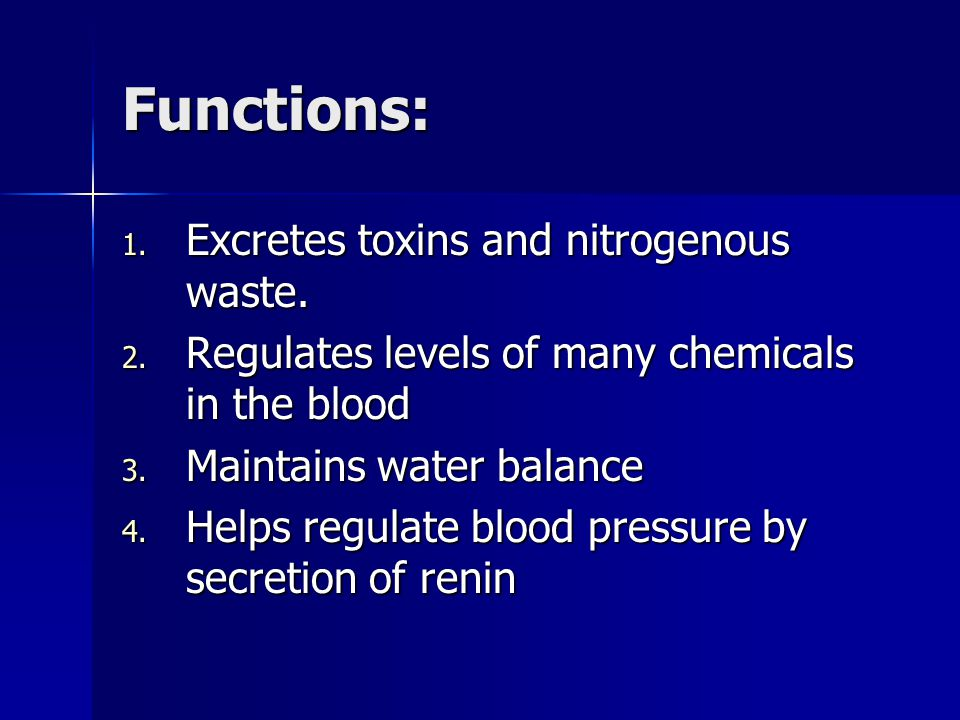 Functions: 1. Excretes toxins and nitrogenous waste.