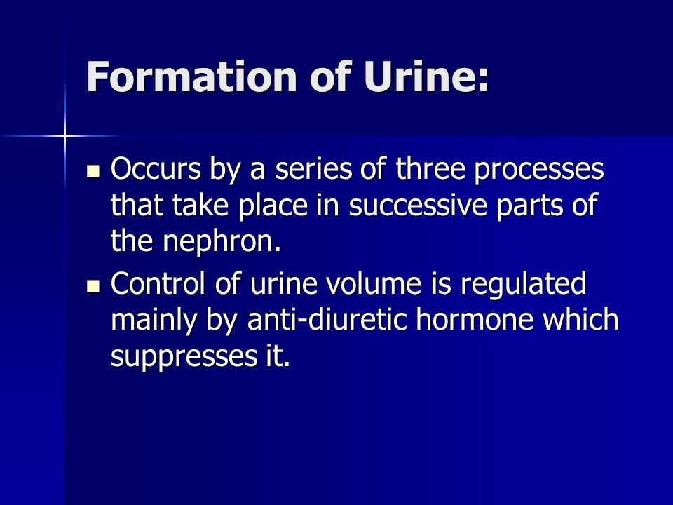 Formation of Urine: Occurs by a series of three processes that take place in successive parts of the nephron.