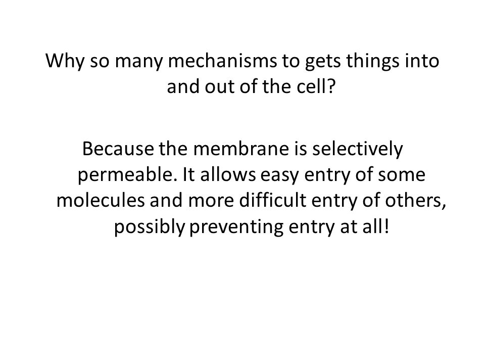 Why so many mechanisms to gets things into and out of the cell.
