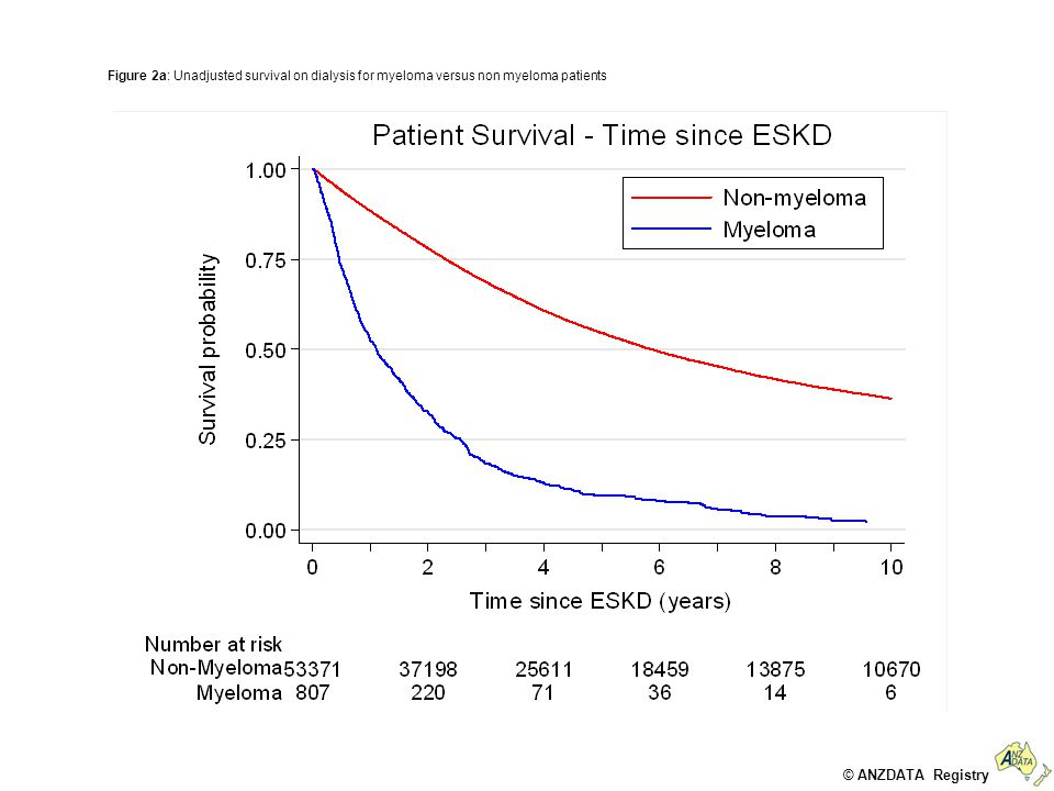 © ANZDATA Registry Figure 2b Unadjusted survival on dialysis, stratified by primary renal disease