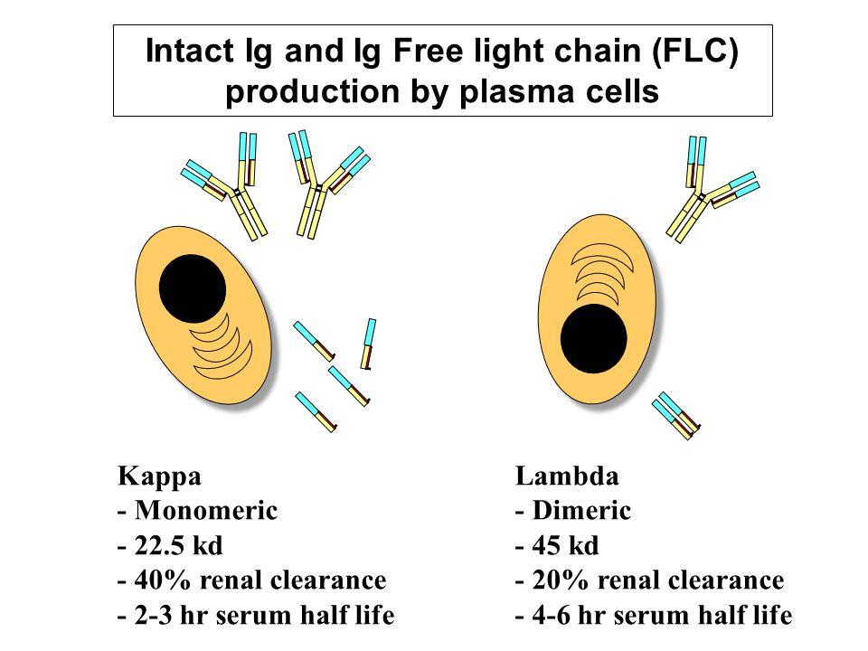 Lancet 2003; 361: 489-491 Normal range – serum FLC