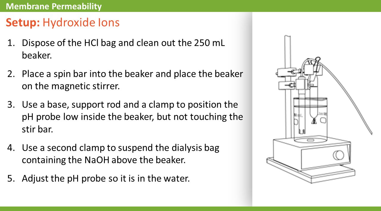 Setup: Hydroxide Ions 1.Dispose of the HCl bag and clean out the 250 mL beaker. 2.Place a spin bar into the beaker and place the beaker on the magneti