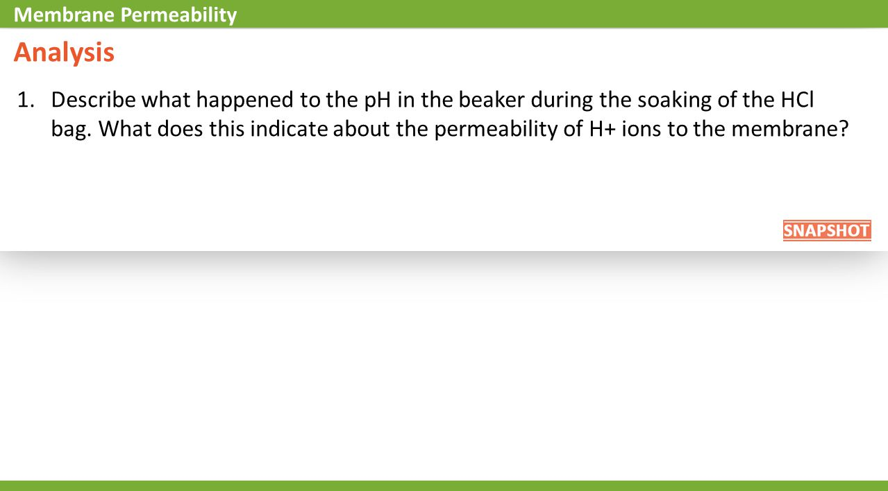 Analysis 1.Describe what happened to the pH in the beaker during the soaking of the HCl bag. What does this indicate about the permeability of H+ ions
