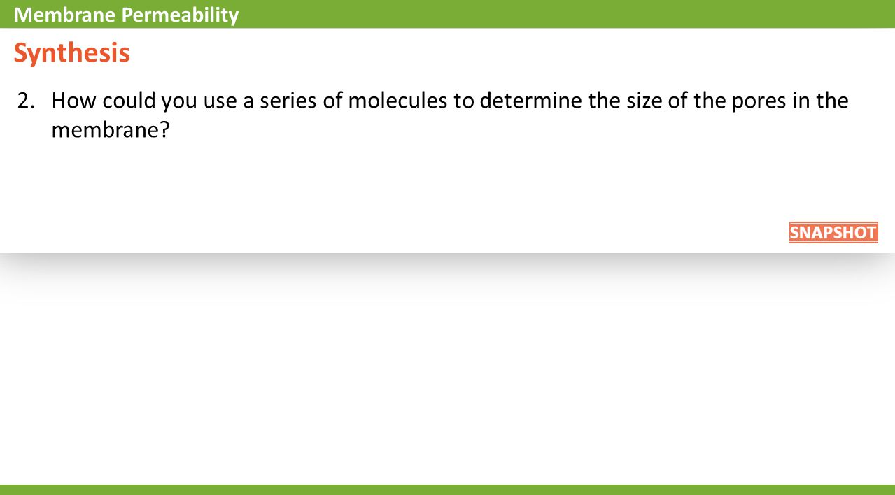 2.How could you use a series of molecules to determine the size of the pores in the membrane.