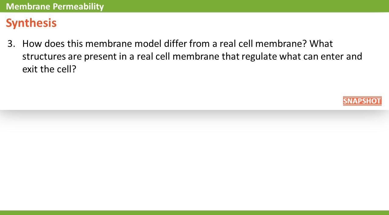 3.How does this membrane model differ from a real cell membrane? What structures are present in a real cell membrane that regulate what can enter and