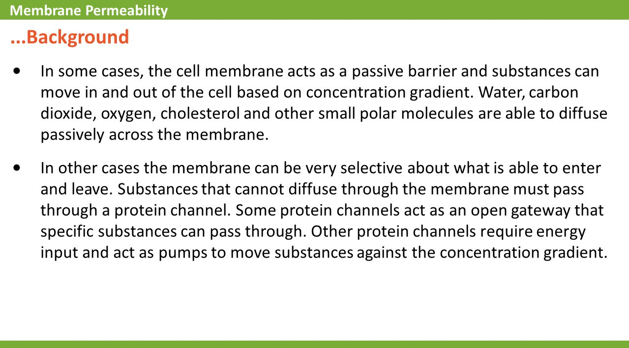 ...Background In some cases, the cell membrane acts as a passive barrier and substances can move in and out of the cell based on concentration gradien
